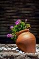 Large flower pot