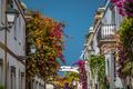 Colorful Puerto de Mogan
