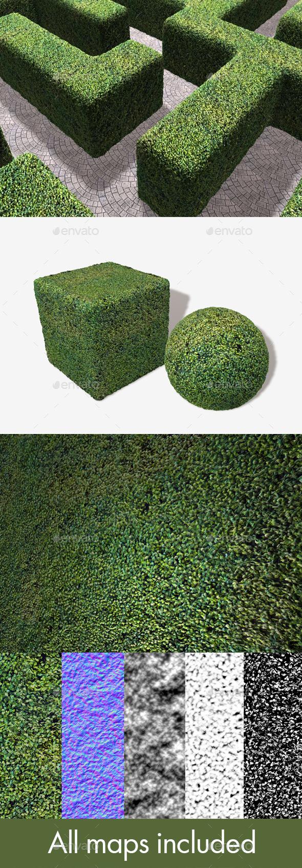 3DOcean Fake Astro Hedge Seamless Texture 20032537