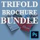 Corporate Brochure Bundle