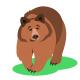 Forest Animals Cartoon Illustrations Set