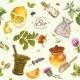 Organic Cosmetics Pattern