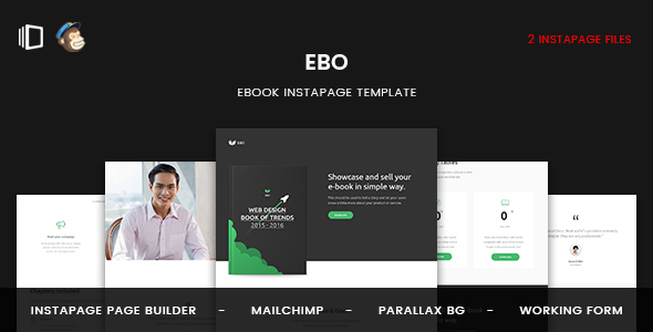 Ebo - Ebook Instapage Template