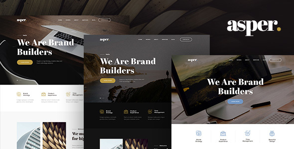 Asper - Responsive Multipurpose Adobe Muse Theme