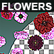 Flowers Falling Background