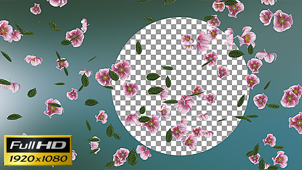 Flowers Falling Loop Background