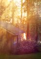 Sauna cottage in midsummer night near lake