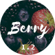 Berry - A Fresh Personal Blog and Shop Theme