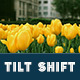 25 Tilt Shift Pro Lightroom Presets