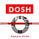 Dosh - Google Slide