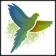 Bird Media Logo