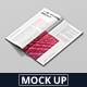 DL Brochure / Magazine Mockup