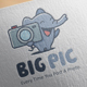 Big Picture Logo Design