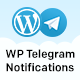 Wordpress Telegram Notifications
