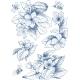 Vintage Botanical Illustration Blossom Flowers