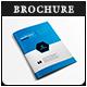 Pro Business Data Analysis Brochure V02
