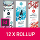 Rollup Stand Banner Display Triangles White 12x Indesign Template