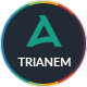 Trianem - Multipurpose Google Slides Template