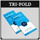 Pro Business Data Analysis Tri-fold Brochure V02