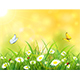 Yellow Nature Background with Sun and Butterflies