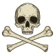 Human Skull with Two Crossed Bones Isolated