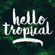 Hello Tropical
