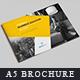 A5 Brochure & Catalog