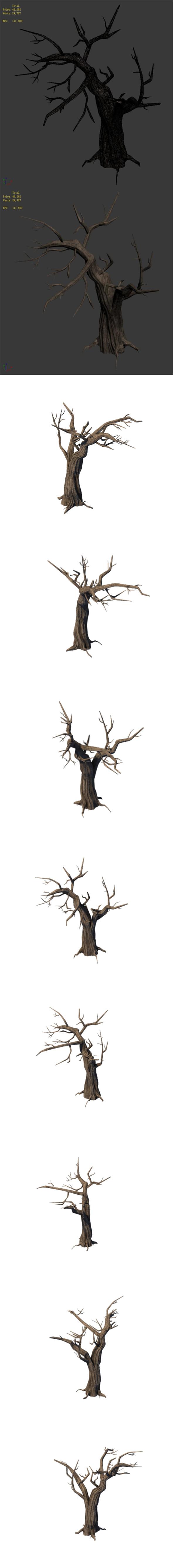 3DOcean General Plant Trees 05 20162342