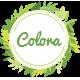 Colora - Organic Responsive Magento Theme
