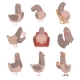 Cartoon Bird Set