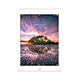 iPad Pro 9.7 Pink