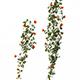 Plant - vines 01