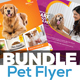Pets Flyer Template Bundle V3