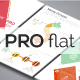 Pro Flat Infographic Brochure 10 (4 Versions)