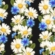 Meadow Flowers Seamless