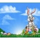 Easter Background with Bunny and Eggs