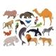 Zoo Wild Animals