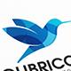 Colibri Bird Logo Design