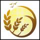 Digital Wheat Logo
