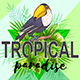 Palm Leaves and Toucan Bird