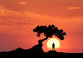 Man under the crooked tree on the background of sun