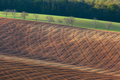 Beautiful minimalistic landscape with striped wavy fields