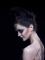 Portrait of the ballerina in the role of a black swan on black background