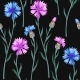 Seamless Pattern with Colorful Cornflowers