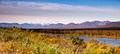 Denali Range Mt McKinley Alaska North America