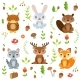 Forest Animals in Cartoon Style. Vector Characters