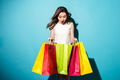 Portrait of a pretty young woman shopaholic with colorful bags