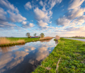 Amazing colorful rustic landscape in Holland