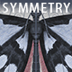 Realtime Symmetry Painting