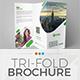 Tri-Fold Brochure Template 01